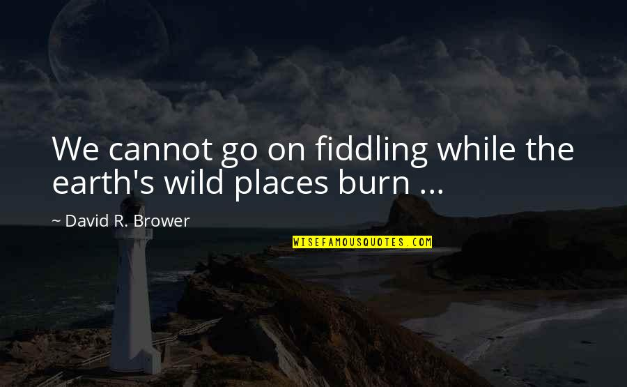 Fiddling Quotes By David R. Brower: We cannot go on fiddling while the earth's