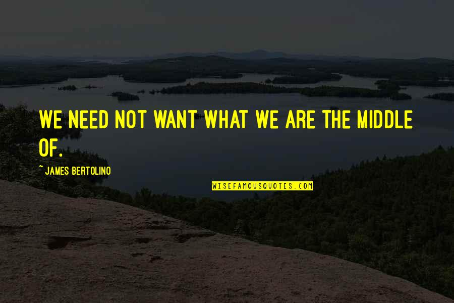 Fiery Eyes Quotes By James Bertolino: We need not want what we are the