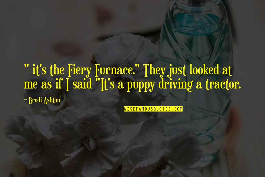 "Fiery Furnace Quotes By Brodi Ashton: "" it's the Fiery Furnace."" They just looked"