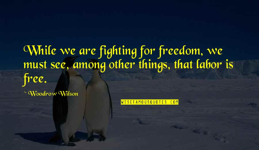 Fighting For Freedom Quotes By Woodrow Wilson: While we are fighting for freedom, we must
