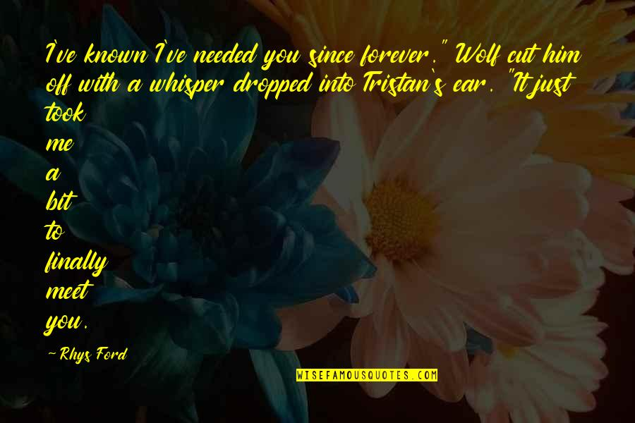 "Finally We Meet Quotes By Rhys Ford: I've known I've needed you since forever."" Wolf"