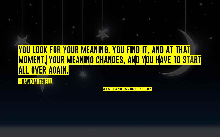 Find You Again Quotes By David Mitchell: You look for your meaning. You find it,