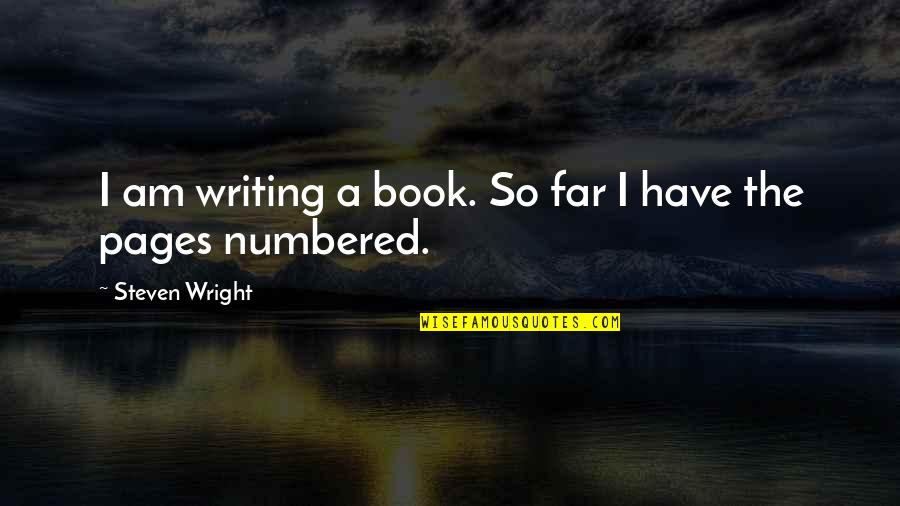 Finding Joy In The Journey Quotes By Steven Wright: I am writing a book. So far I
