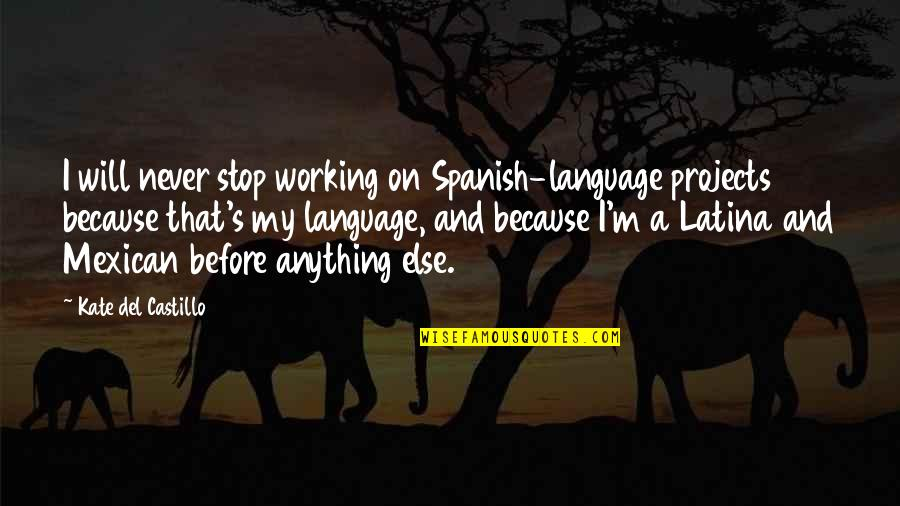 Finding Out Something Bad Quotes By Kate Del Castillo: I will never stop working on Spanish-language projects