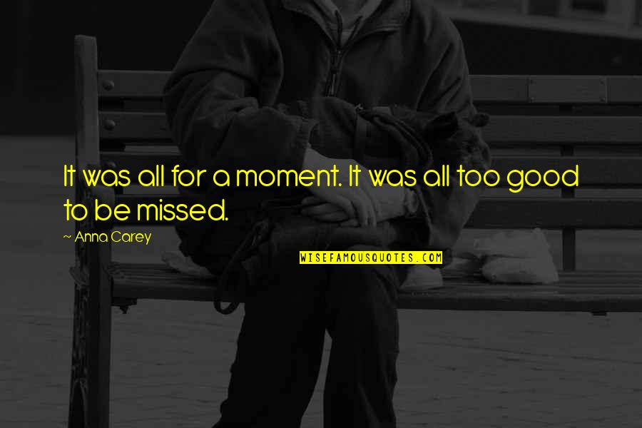 Finnie Quotes By Anna Carey: It was all for a moment. It was