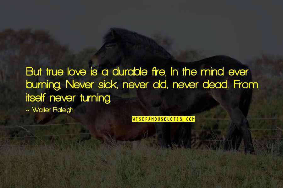 Fire Burning Love Quotes By Walter Raleigh: But true love is a durable fire, In