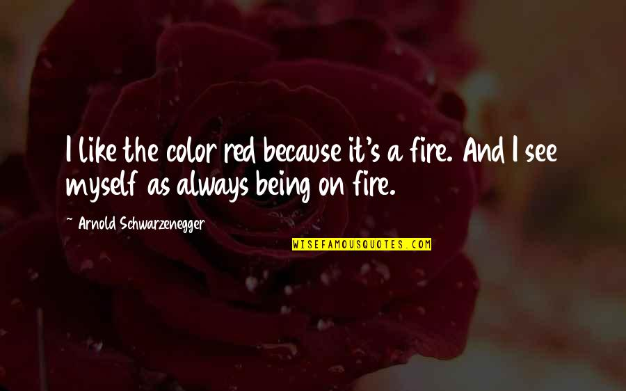 Fire Red Quotes By Arnold Schwarzenegger: I like the color red because it's a