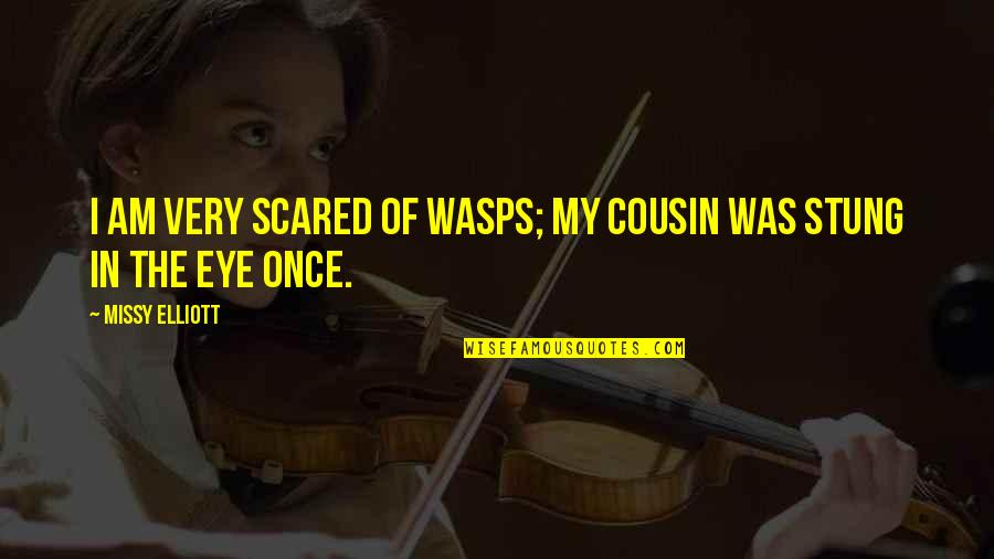 Fire Starters Quotes By Missy Elliott: I am very scared of wasps; my cousin