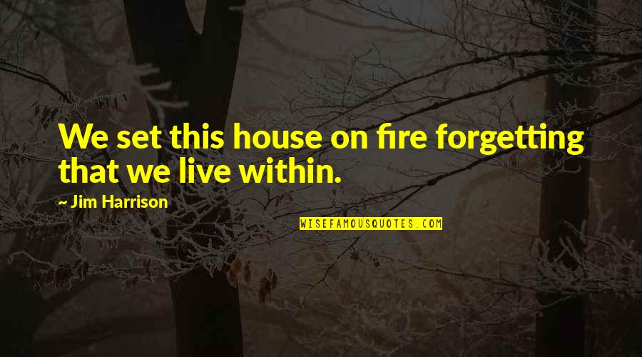Fire Within Quotes By Jim Harrison: We set this house on fire forgetting that