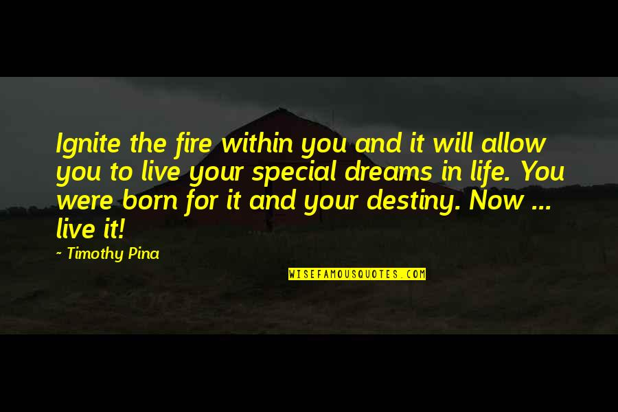 Fire Within Quotes By Timothy Pina: Ignite the fire within you and it will