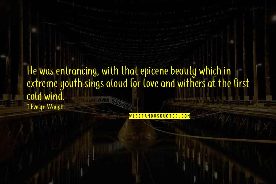 First Infatuation Quotes By Evelyn Waugh: He was entrancing, with that epicene beauty which