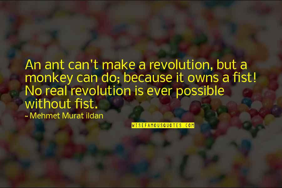 Fist Quotes By Mehmet Murat Ildan: An ant can't make a revolution, but a