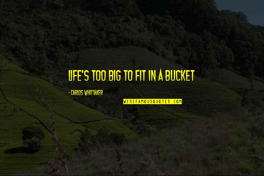 Fit Life Quotes By Carlos Whittaker: Life's too big to fit in a bucket