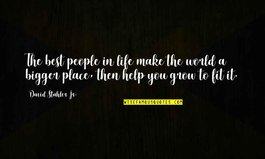 Fit Life Quotes By David Stahler Jr.: The best people in life make the world