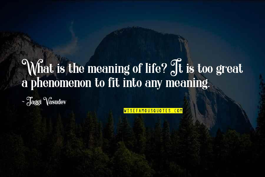 Fit Life Quotes By Jaggi Vasudev: What is the meaning of life? It is