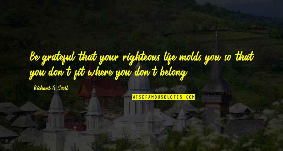 Fit Life Quotes By Richard G. Scott: Be grateful that your righteous life molds you