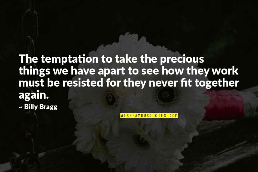 Fit To Work Quotes By Billy Bragg: The temptation to take the precious things we