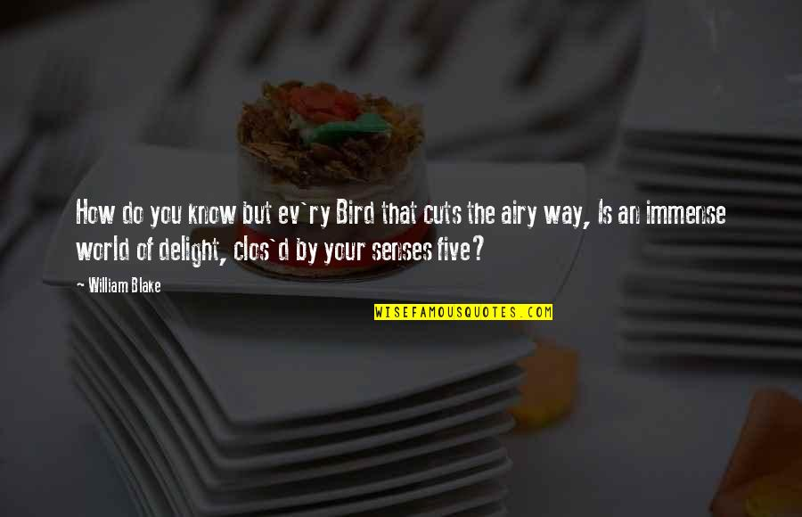 Five Senses Quotes By William Blake: How do you know but ev'ry Bird that