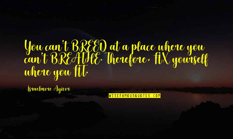 Fix It Yourself Quotes By Israelmore Ayivor: You can't BREED at a place where you