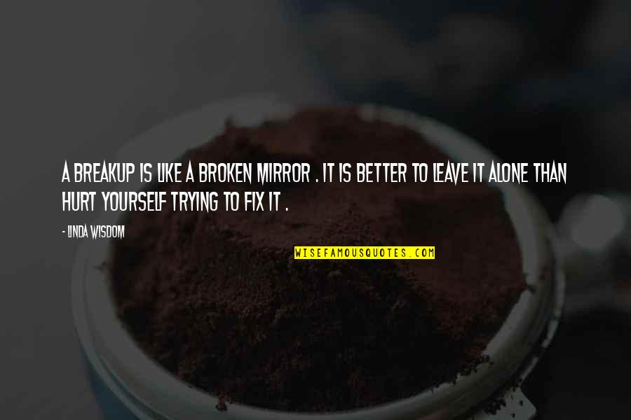 Fix It Yourself Quotes By Linda Wisdom: A breakup is like a broken mirror .