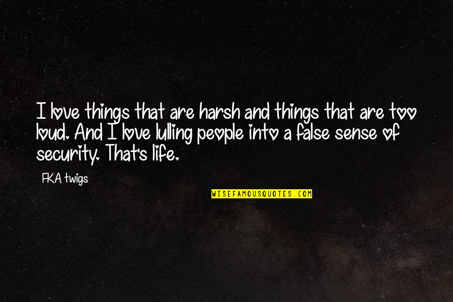 Fka Twigs Quotes By FKA Twigs: I love things that are harsh and things