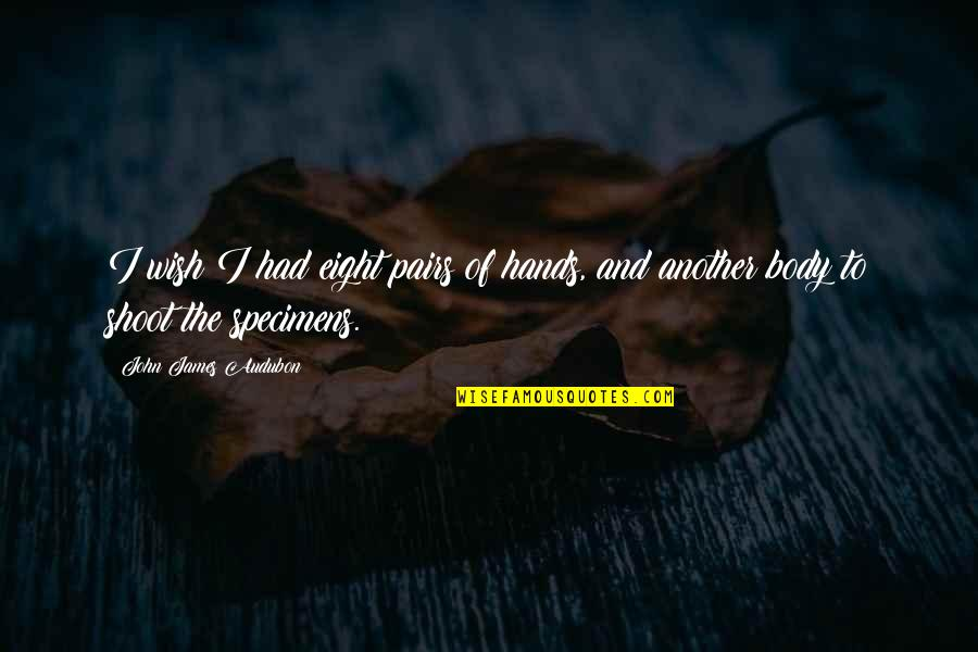 Flago Quotes By John James Audubon: I wish I had eight pairs of hands,