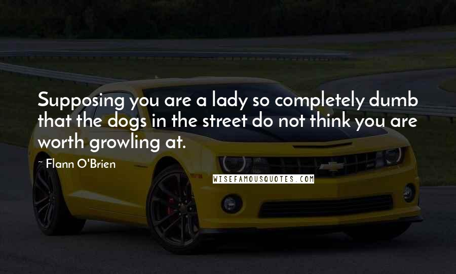 Flann O'Brien quotes: Supposing you are a lady so completely dumb that the dogs in the street do not think you are worth growling at.