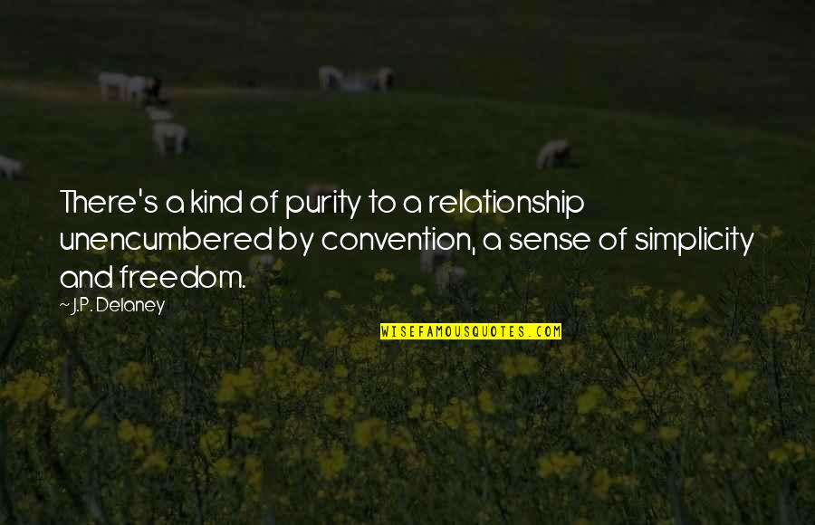 Flash Drive Quotes By J.P. Delaney: There's a kind of purity to a relationship