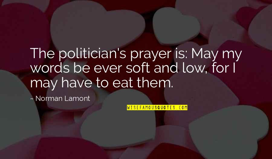 Flash Drive Quotes By Norman Lamont: The politician's prayer is: May my words be