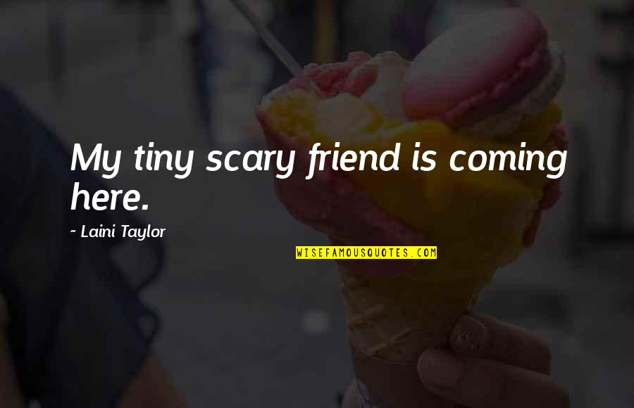 Flashdance Quotes By Laini Taylor: My tiny scary friend is coming here.