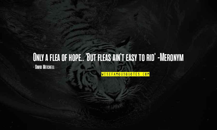 Flea Quotes By David Mitchell: Only a flea of hope.. 'But fleas ain't