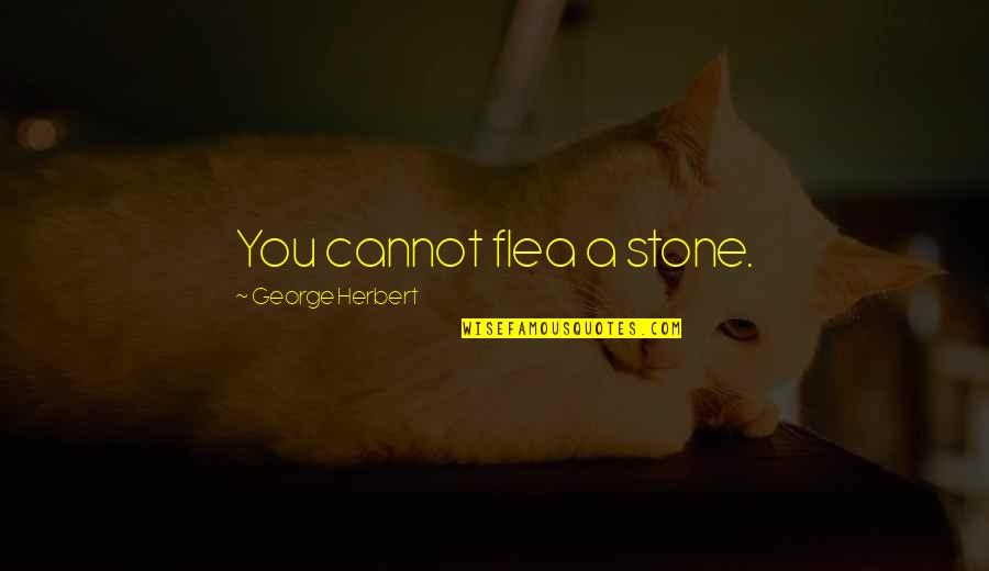 Flea Quotes By George Herbert: You cannot flea a stone.