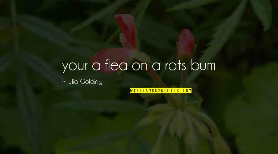 Flea Quotes By Julia Golding: your a flea on a rats bum