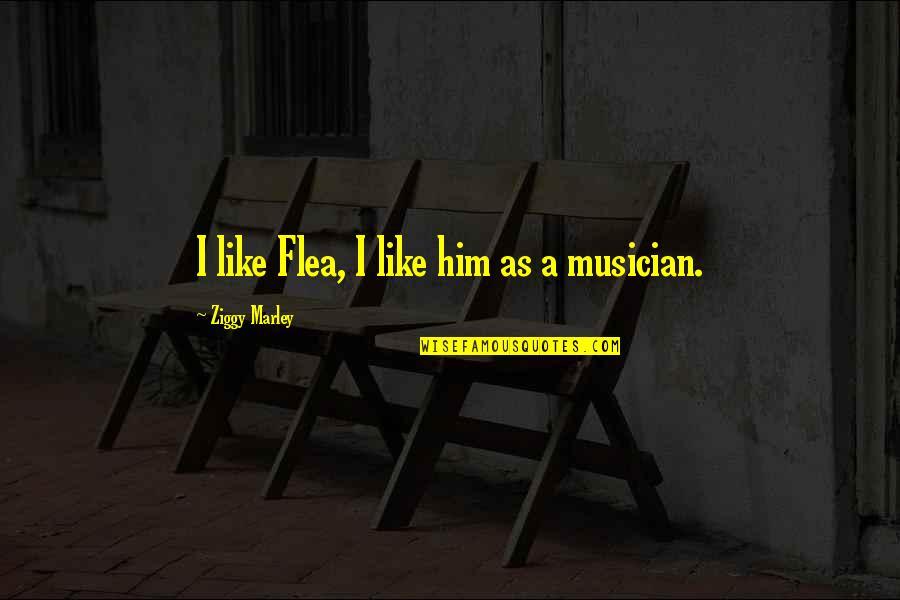 Flea Quotes By Ziggy Marley: I like Flea, I like him as a