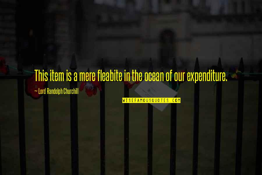 Fleabite Quotes By Lord Randolph Churchill: This item is a mere fleabite in the