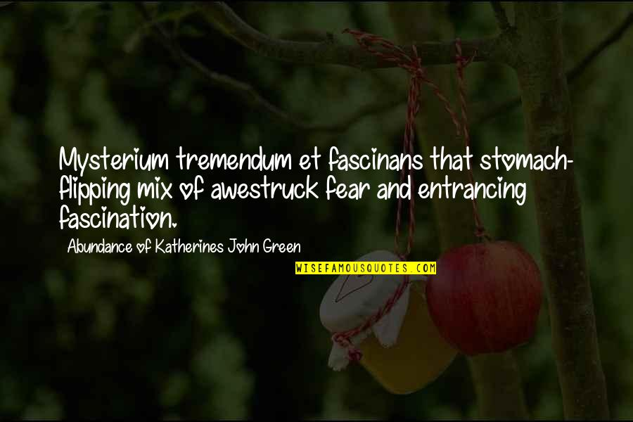 Flipping Out Quotes By Abundance Of Katherines John Green: Mysterium tremendum et fascinans that stomach- flipping mix