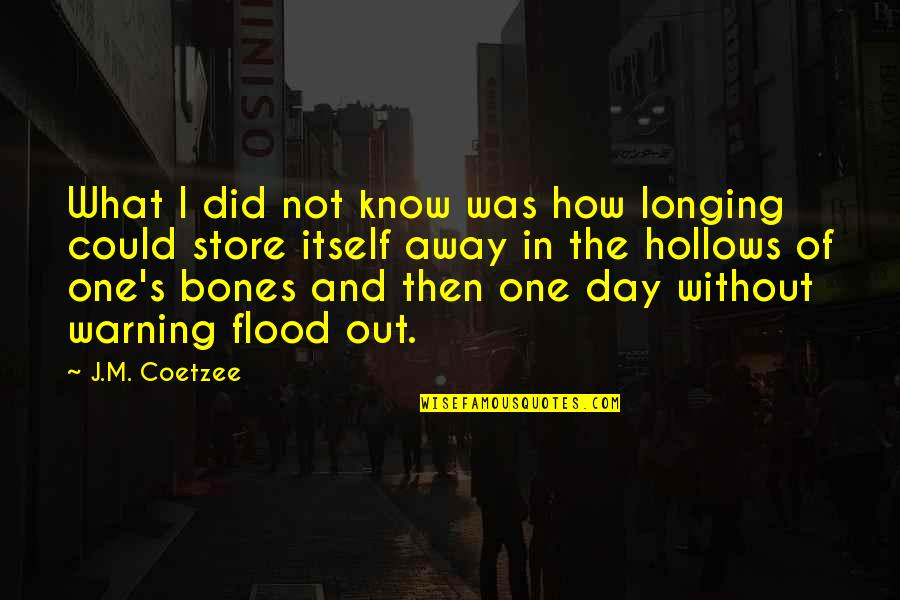 Flood Warning Quotes By J.M. Coetzee: What I did not know was how longing