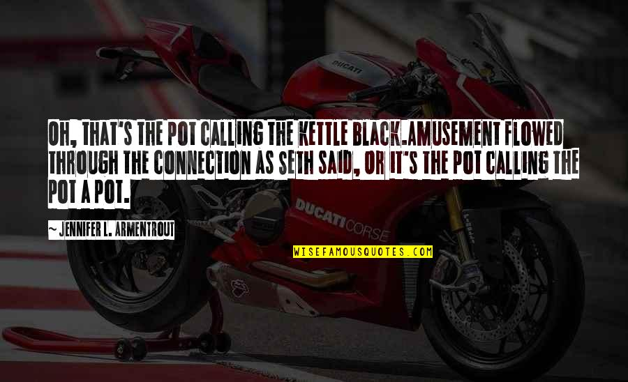 Flowed Quotes By Jennifer L. Armentrout: Oh, that's the pot calling the kettle black.Amusement