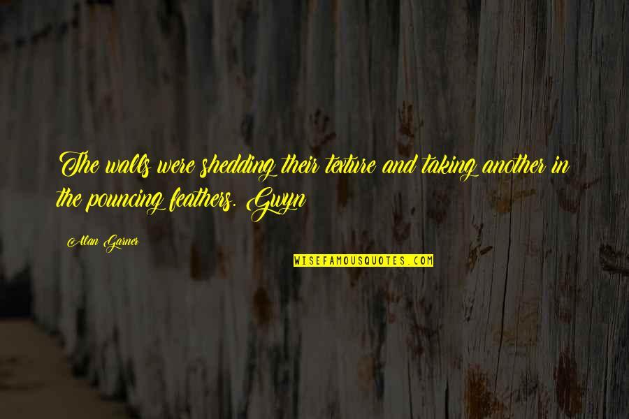 Flower Boy Next Door Dok Mi Quotes By Alan Garner: The walls were shedding their texture and taking