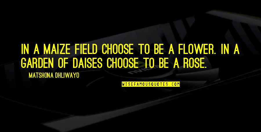 Flower Garden Quotes By Matshona Dhliwayo: In a maize field choose to be a