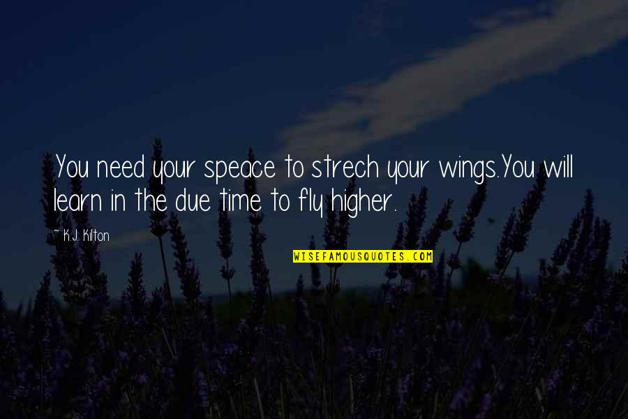 Fly Higher Quotes By K.J. Kilton: You need your speace to strech your wings.You