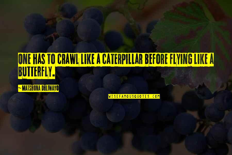 Flying Like A Butterfly Quotes By Matshona Dhliwayo: One has to crawl like a caterpillar before