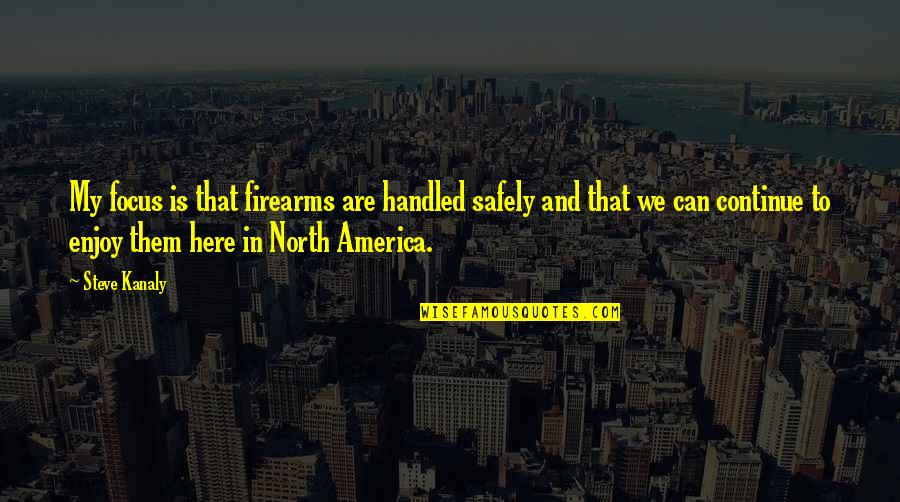Focus On The Here And Now Quotes By Steve Kanaly: My focus is that firearms are handled safely