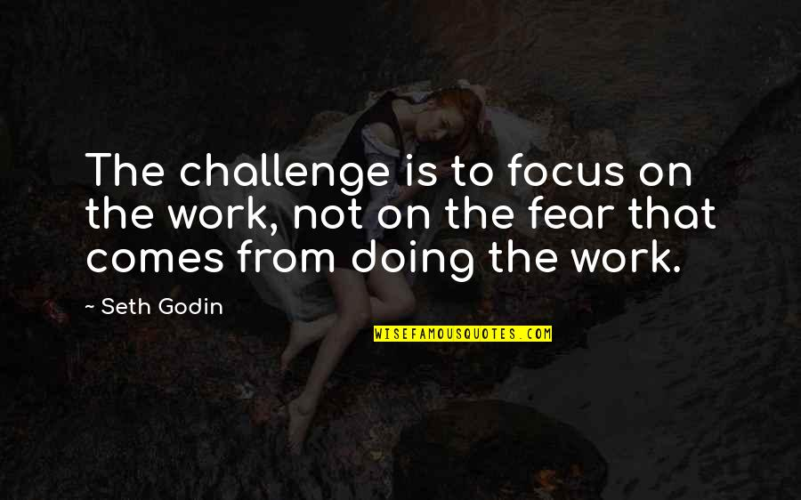 Focus On Work Quotes By Seth Godin: The challenge is to focus on the work,