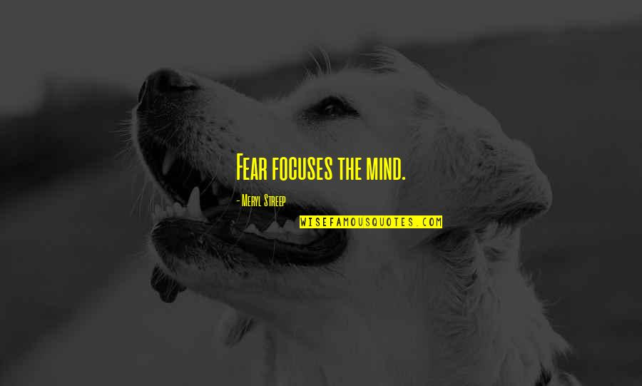 Focuses Quotes By Meryl Streep: Fear focuses the mind.