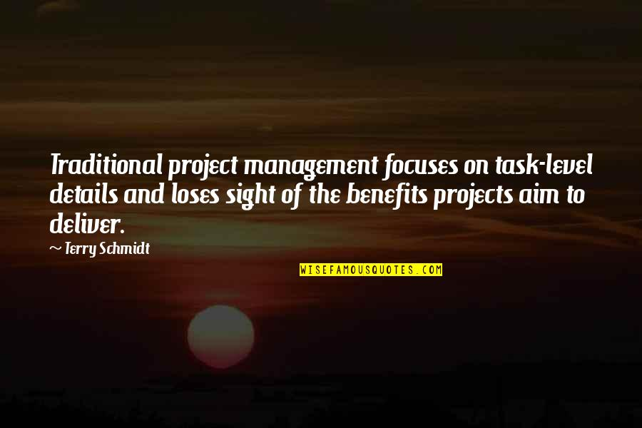 Focuses Quotes By Terry Schmidt: Traditional project management focuses on task-level details and