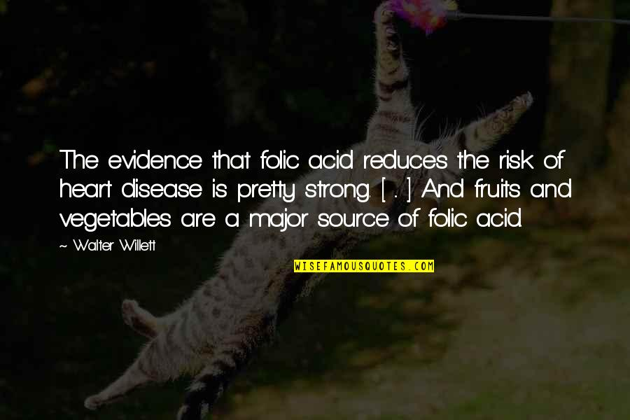 Folic Acid Quotes By Walter Willett: The evidence that folic acid reduces the risk