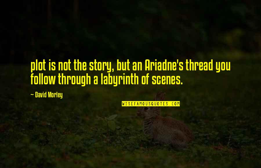 Follow Through Quotes By David Morley: plot is not the story, but an Ariadne's