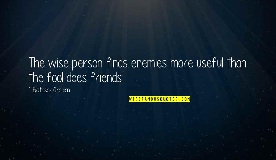 Fool Person Quotes By Baltasar Gracian: The wise person finds enemies more useful than