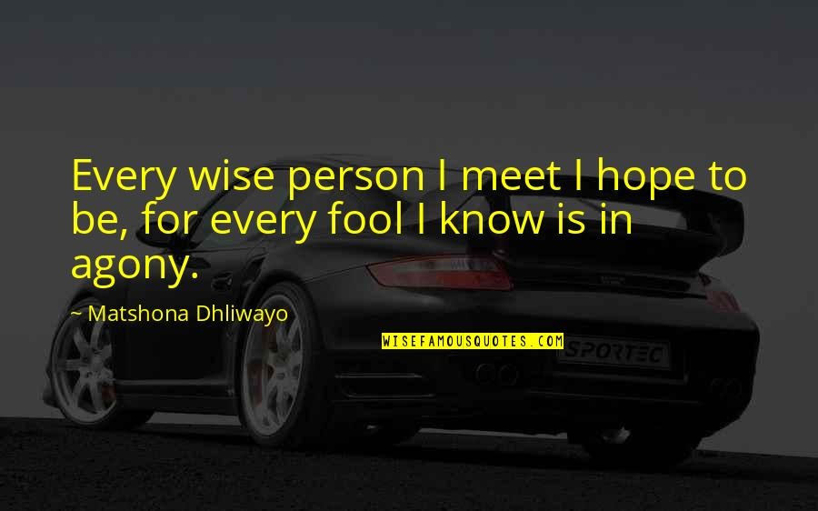 Fool Person Quotes By Matshona Dhliwayo: Every wise person I meet I hope to